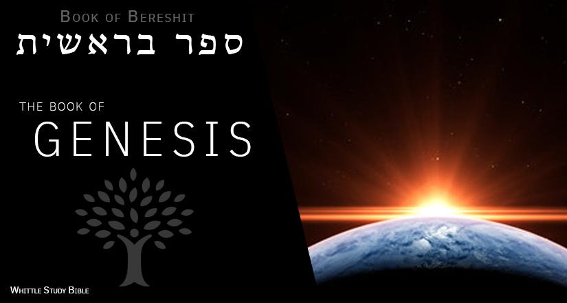 Genesis (Bereshit) Cover