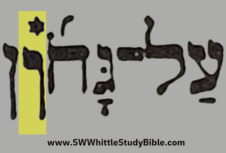 Leviticus (Vayikra) 11.42 Enlarged Vav