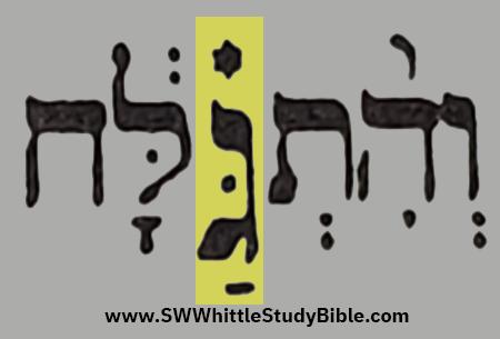 Leviticus (Vayikra) 13.33 Enlarged Gimel